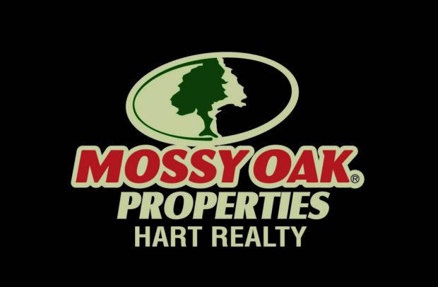 MOP Hart